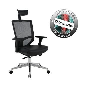 Eve 24/7 Ergonomic Mesh and Leather Task Chair £209 -  sc 1 st  Equip4work & Eve 24/7 Ergonomic Mesh and Leather Task Chair | Cheap Eve 24/7 ...