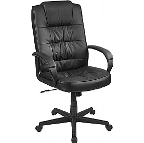Acadia Executive Enviro Leather Chair