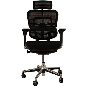 Ergohuman Mesh Office Chairs (With Headrest)
