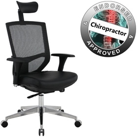 eve 24 7 ergonomic mesh and leather task chair cheap eve 24 7