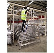 Lyte Fixed Industrial Double Sided Steps