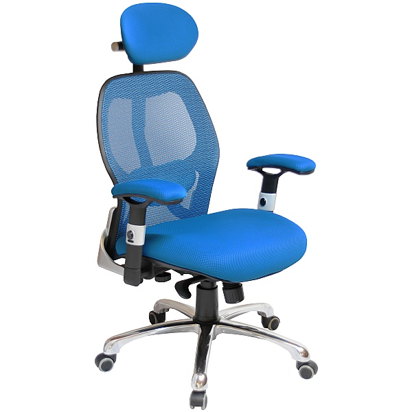 Ergo-Tek Blue Mesh Manager Chair